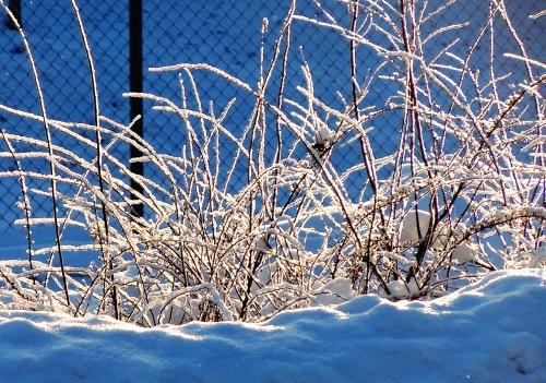 Snö kr  2013