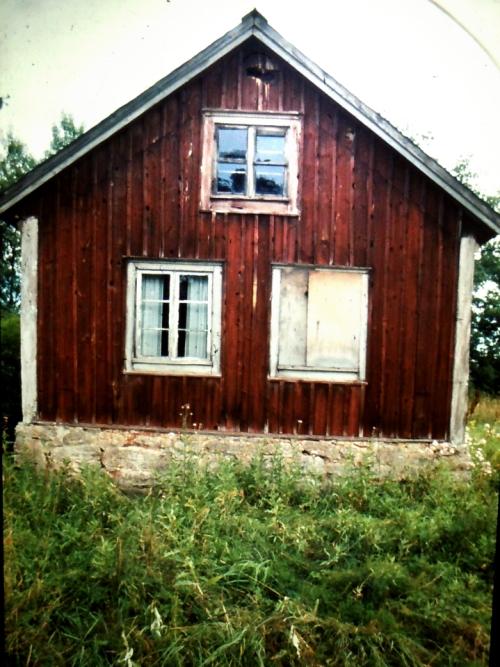 Swanson Österskog kr