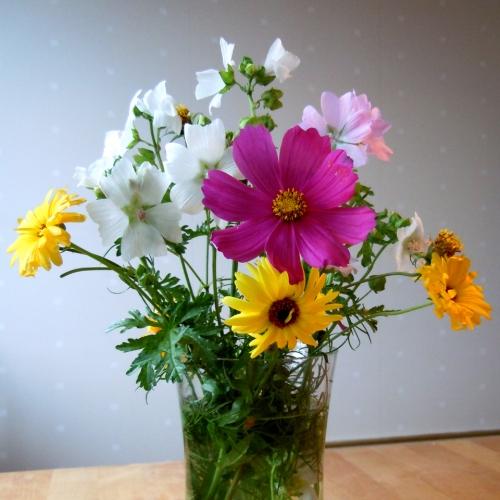 sena blomster kr