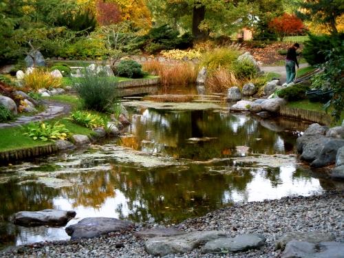 Japanska dammen i oktober kr