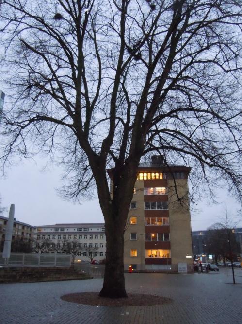 2012 november med Monica o Tollef i Uppsala