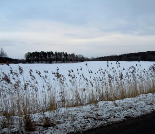 Inte en sjö -  en åker med snö kr