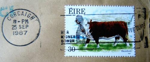 Irland kr