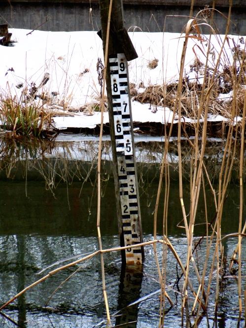 Mycket vatten i ån