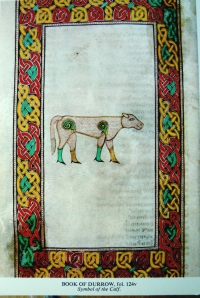 Book of Durrow calf kr