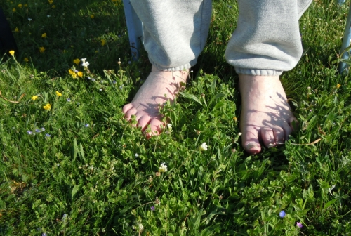i gräset kr