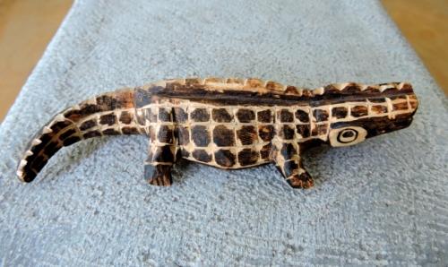Alligator från Argentina kr