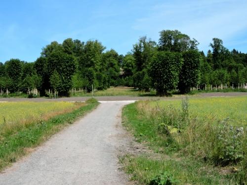 Barockparken entre kr