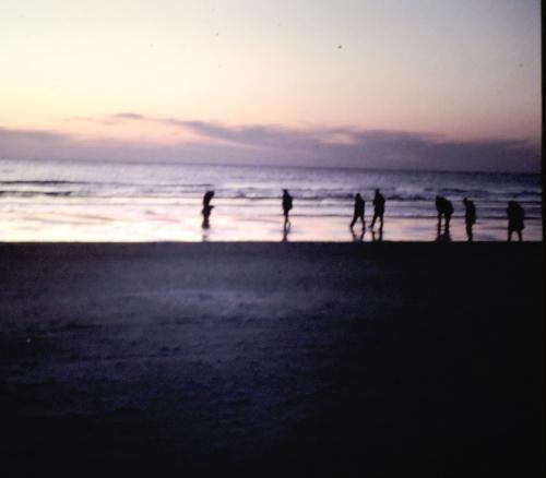 Vid stranden i skymningen kr