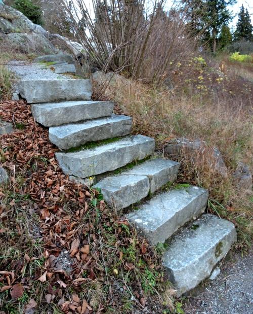 Bergianska den trappan går jag inte upp kr
