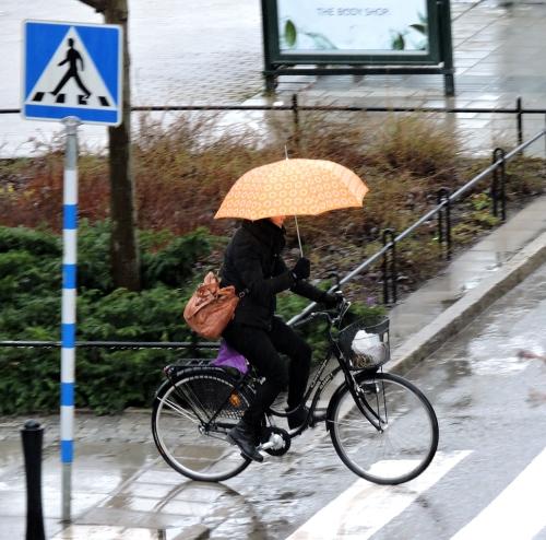 Regn i
