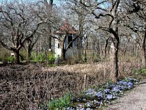 Skogaholms ännu sovande trädgård