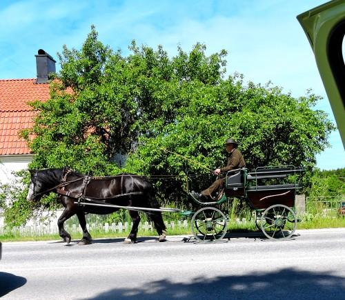 Gotland Hemsedagen