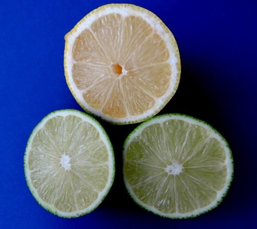 Lime och citron inuti