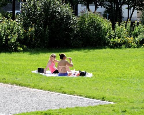Väsby Suseboparkens nya fina solbelysta gräsmatta.