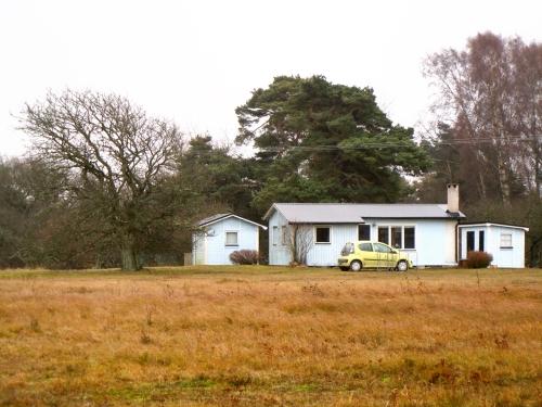 2011 Gotland november kr jpg